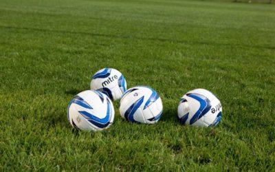 The Bees get a boost for Girls football